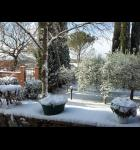 il giardino d'inverno